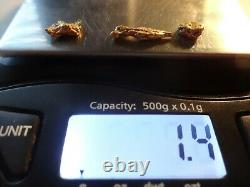 GOLD NUGGETS 1.4 GRAMS Natural California Placer Gold Mined in Placerville, Ca
