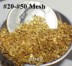 GOLD NUGGETS 10+ GRAMS Alaska Natural #20-#50 Screen High Purity Mammoth Creek