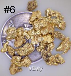 GOLD NUGGETS 10+ GRAMS Placer Alaska Natural #6 Screen High Purity Gold