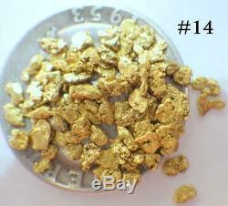 GOLD NUGGETS 3+ GRAMS Alaska Natural Placer #14 Mesh Jewelers Grade Hi Purity