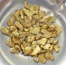 GOLD NUGGETS 4+ GRAMS Placer Alaska Natural #12 Jewelers Grade Overlay