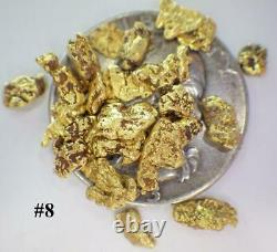 GOLD NUGGETS 5+ GRAMS Alaska Natural Placer #8 Screen Ganes Creek