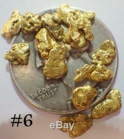GOLD NUGGETS 5+ GRAMS Alaskan Natural Placer #6 Napoleon Creek High Purity