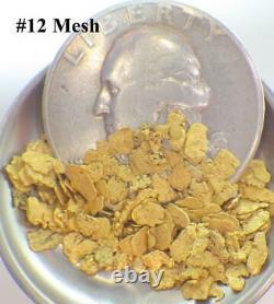 GOLD NUGGETS 5+ GRAMS Placer Alaska Natural #12 Jewelers Grade Overlay
