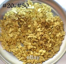 GOLD NUGGETS 6+ GRAMS Alaskan Natural Placer #20 #30 Mesh Porcupine Creek