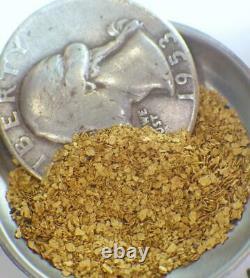 GOLD NUGGETS 6+ GRAMS Placer Alaska Natural #20-#50 Screen Porcupine Creek