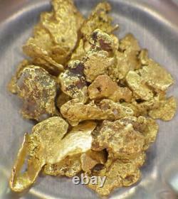 GOLD NUGGETS 7+ GRAMS Alaskan Natural Placer #6 Mammoth Creek NOVEMBER Special