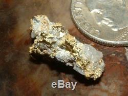 Gold Quartz Specimen Natural Gold Nugget 2.46 Grams Gold In Quartz