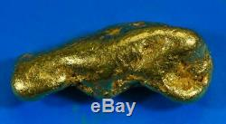 Large Alaskan BC Natural Gold Nugget 51.21 Grams Genuine 1.64 Troy Ounces