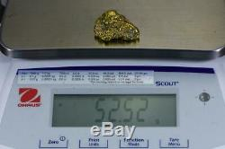 Large Alaskan BC Natural Gold Nugget 52.52 Grams Genuine 1.68 Troy Ounces