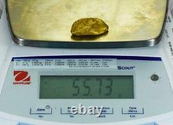 Large Alaskan BC Natural Gold Nugget 55.73 Grams Genuine 1.79 Troy Ounces C