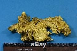 Large Natural Gold Nugget Australian 273.65 Grams 8.79 Troy OuncesThe Dragon