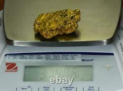 Large Natural Gold Nugget Australian 379.06 Grams 12.19 Troy Ounces Very Rare G