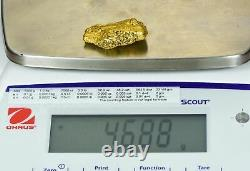 Large Natural Gold Nugget California 46.88 Grams 1.51 Troy Ounces Very Rare