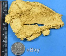 Large Natural Leaf Gold Nugget Australian 196.21 Grams, 6.309 Troy Ounces