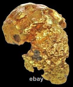 Natural Alaskan Masked Alien Nugget 14.4 Gram Gold Prospector Specimen
