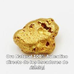 Pepita De Oro Natural 0.539 G Alaska Con Certificado de Autenticidad Gold Nugget