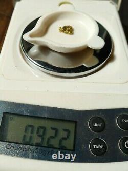 Pépite Or Naturel Alaska 22 Carats Natural Alaskan Gold Nugget 22K Pepita de Oro