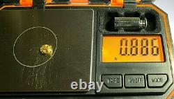 Quality Alaskan Natural Placer Gold Nugget. 886 grams Free Shipping! #A783