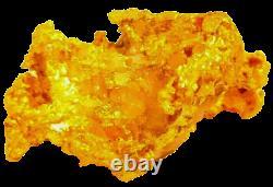 West australian high purity rare natural pilbara gold nugget weight 25.5 grams